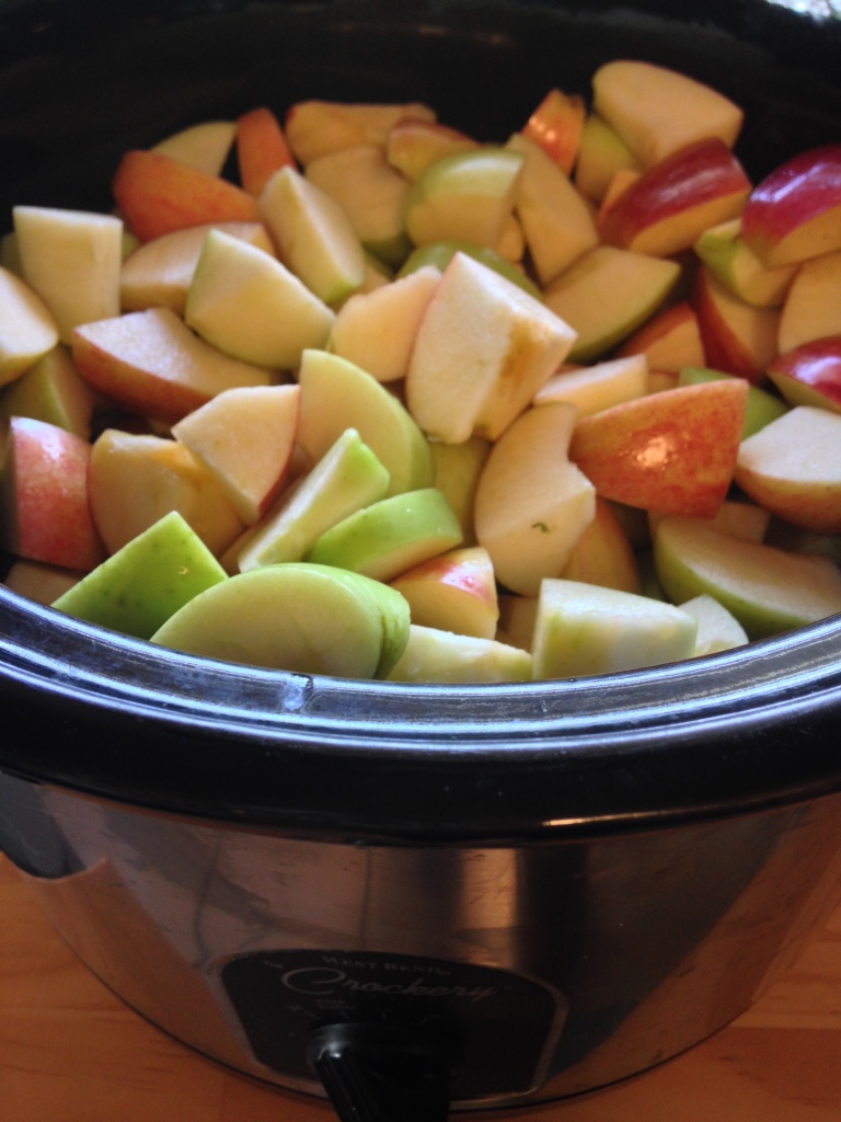 Put apples and water in slow cooker on low for 6 hours.
