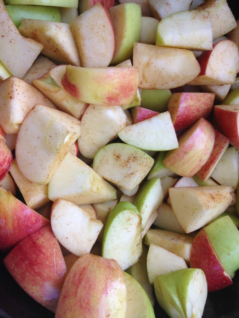 Core and cut into large chunks. Leave the skins on. We want the nutrients of the skin.